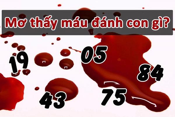 Chảy máu số mấy
