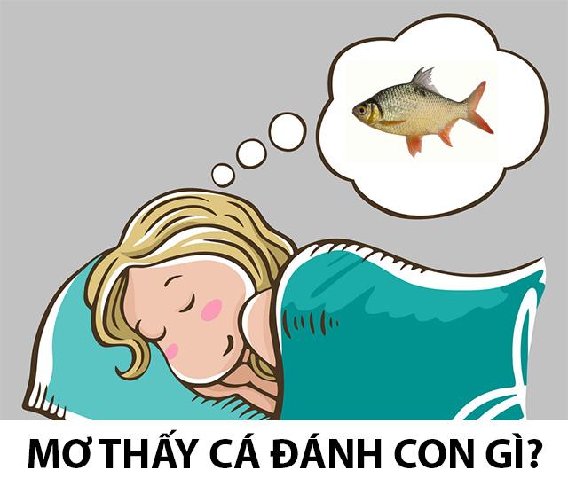 Nằm mơ thấy cá đánh con gì dễ trúng