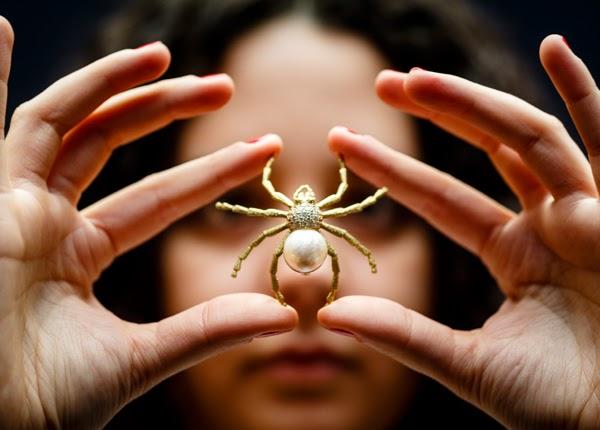 Nằm mơ thấy nhện có thể là điềm may mắn hoặc mang lại điềm gở