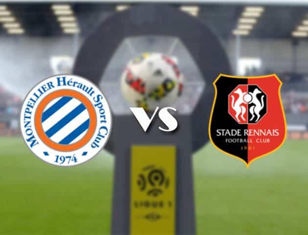Montpellier vs Rennes, 21/2/2021-Nhà vô địch quốc gia Pháp [Ligue 1]