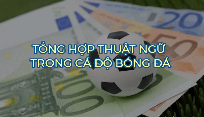 Điều khoản cá cược bóng đá